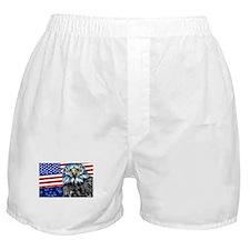 American Eagle USA- Boxer Shorts