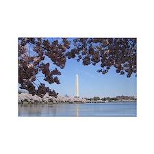 Washington Monument_8 Magnets