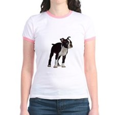 Boston Terrier T