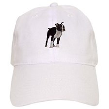 Boston Terrier Cap
