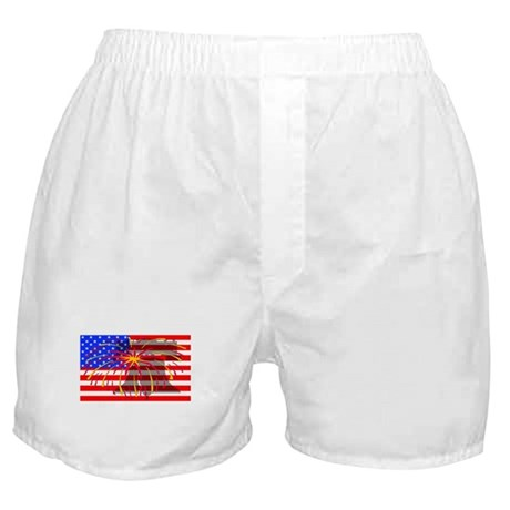 4th of July Independence Boxer Shorts