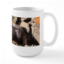 Cross Fox Kit Mug