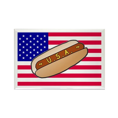USA Hotdog Rectangle Magnet (100 pack)