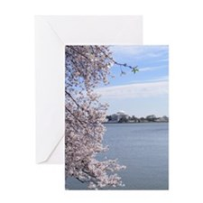 Cherry blossom in dc Greeting Card