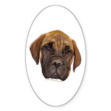 Bullmastiff Puppy Oval Decal