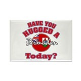 Have you hugged a Bermudan today? Rectangle Magnet