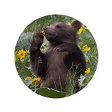 "Grizzly Bear Cub 3.5"" Button (100 pack)"