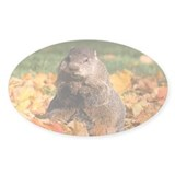 Groundhog Oval Sticker (10 pk)