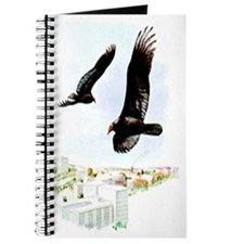 Turkey Vulture Journal