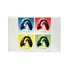 Havanese Pop Art Rectangle Magnet (10 pack)