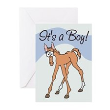 Grandfoal (colt) Greeting Cards (Pk of 10)