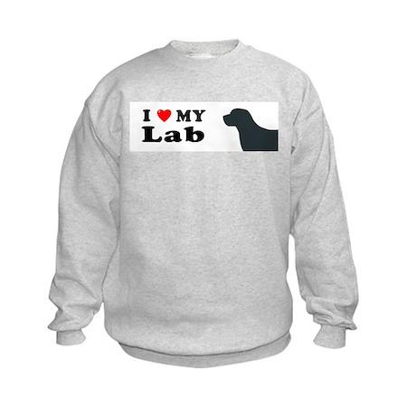 LAB Kids Sweatshirt