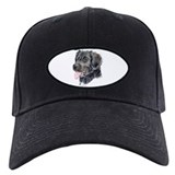 Stabyhoun Baseball Cap