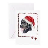 Christmas Stabyhoun Greeting Cards (Pk of 20)