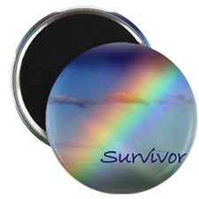 Rainbow Survivor Magnet