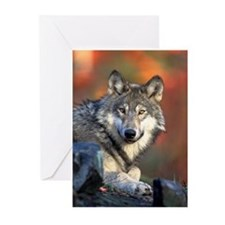 Spirit Wolf Greeting Cards (Pk o
