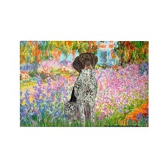 Garden/German Pointer Rectangle Magnet