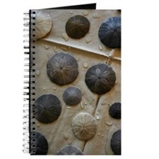 Sand Dollars Journal