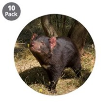 "Tasmanian Devil 3.5"" Button (10 pack)"