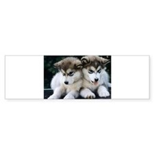 The Huskies Bumper Sticker (10 pk)
