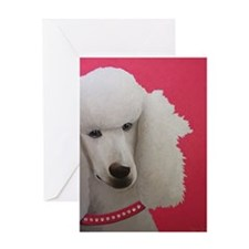 The Poodle Greeting Card