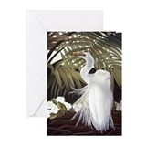 Egret Greeting Cards (Pk of 20)