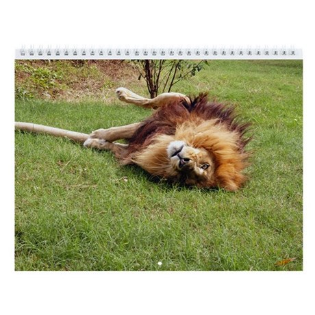 Lion Wall Calendar