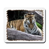 ...Tiger 3... Mousepad