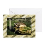 ...Turtle 2... Greeting Cards (Pk of 20)