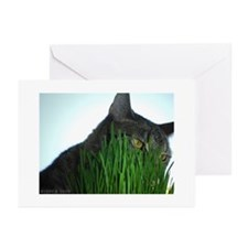 Unique Menominee animal shelter Greeting Cards (Pk of 10)