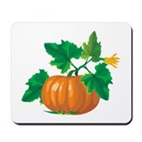 Beautiful Pumpkin Mousepad
