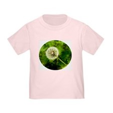 Dandelion's make a wish T