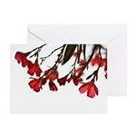 floral Greeting Cards (Pk of 10)
