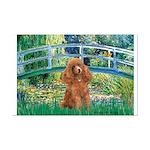 Lily Pond Bridge/Poodle (apri Mini Poster Print