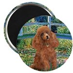 Lily Pond Bridge/Poodle (apri Magnet