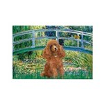 Lily Pond Bridge/Poodle (apri Rectangle Magnet