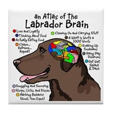 Chocolate Lab Brain Tile Coaster