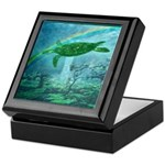 Rainforest Turtle Keepsake Box