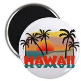 Hawaiian / Hawaii Souvenir Magnet