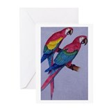 Two Macaws Greeting Cards (Pk of 10)