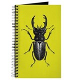 Stag Beetle Journal