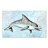 Dolphin Rectangle Decal