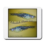 Zebrafish Mousepad