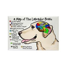 Yellow Lab Brain Rectangle Magnet