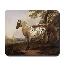 Appaloosa Painting Mousepad