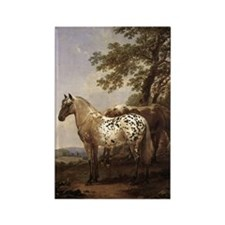 Appaloosa Painting Rectangle Magnet