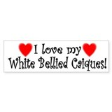 I Love my White Bellied Caiques Bumper Bumper Sticker