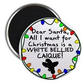 Dear Santa White Bellied Caique Christmas Magnet