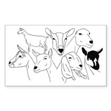 All Dairy Breeds Rectangle Decal