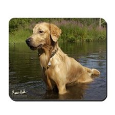 Wet Golden Mousepad
